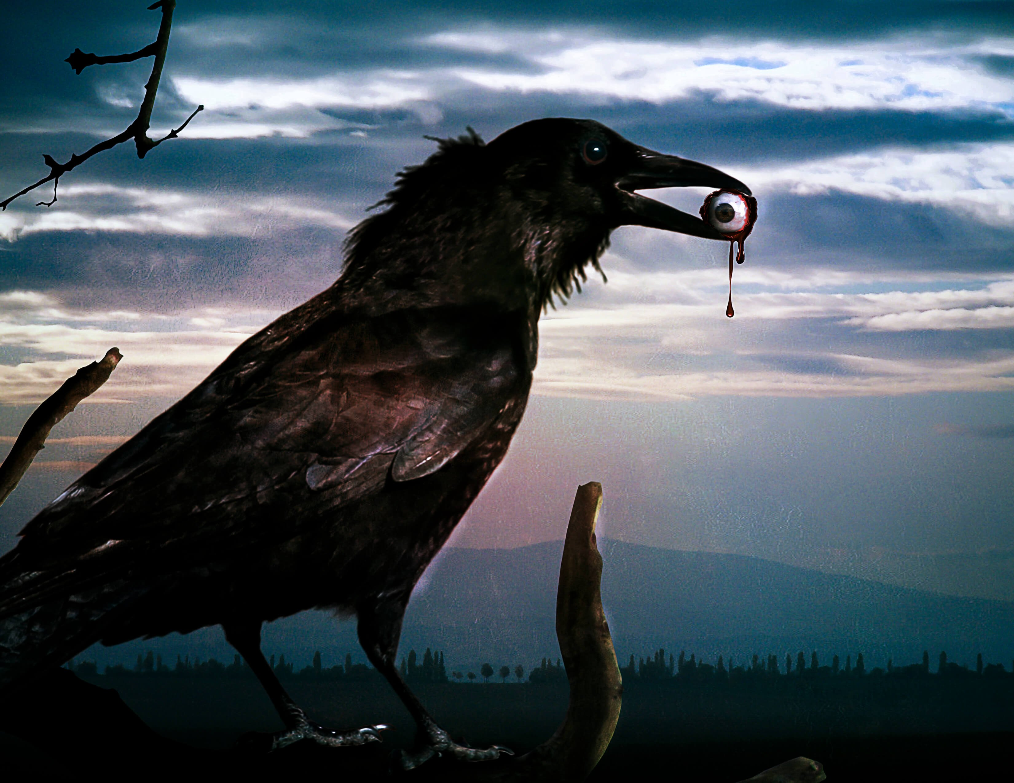 Legends Of Crows Amp The Clock Of Destiny By Deanna Jaxine