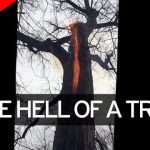 Disturbing footage shows 'Devil tree' burning from the inside with NO smoke
